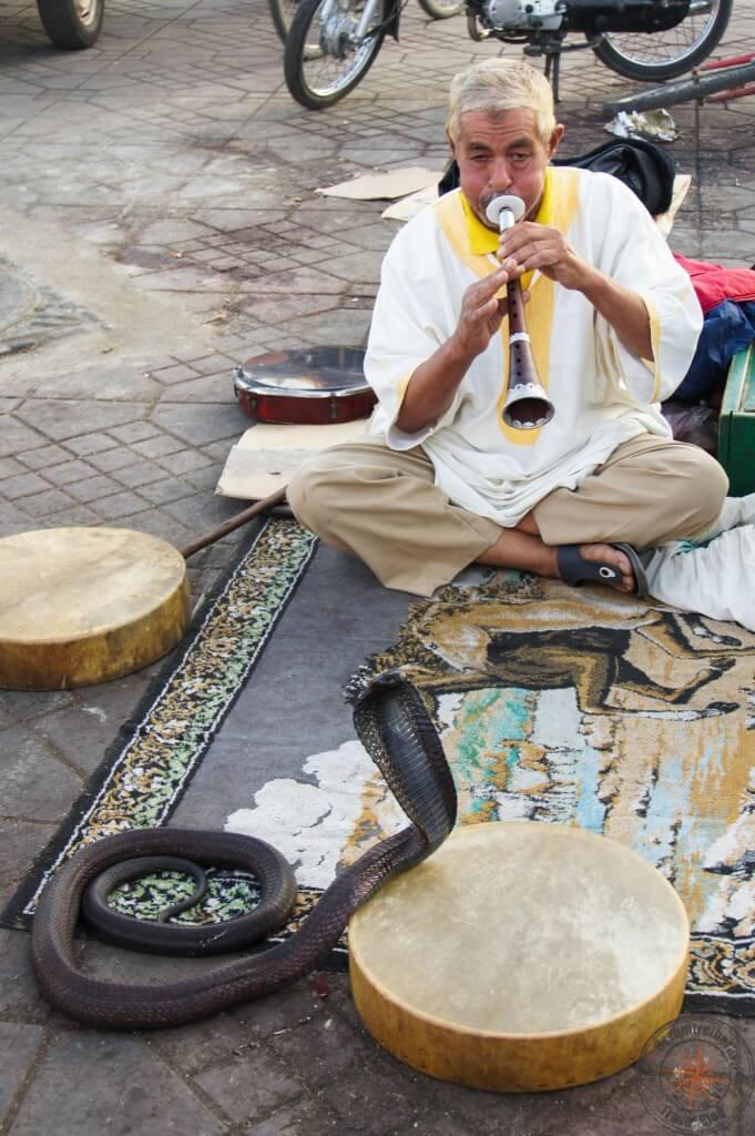 Schlangenbeschwörer, Marrakesch, Marokko