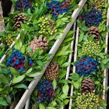 Blumen auf dem Borough Market, London